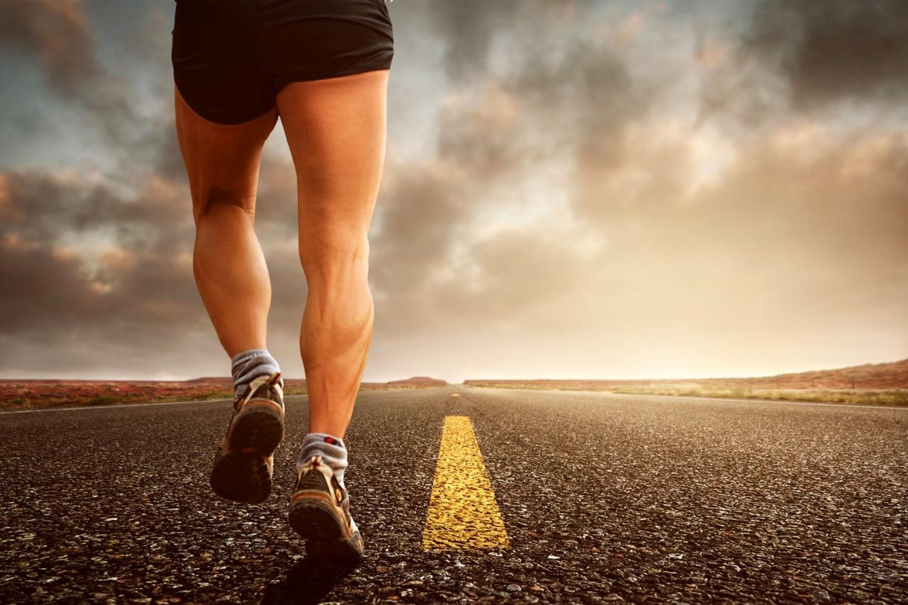 3 redenen waarom Body & Fit dé webshop voor sporters is